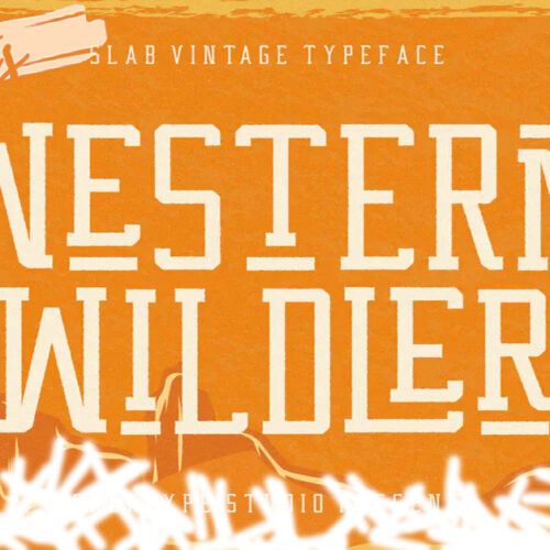 Westboy - Vintage Themed Font